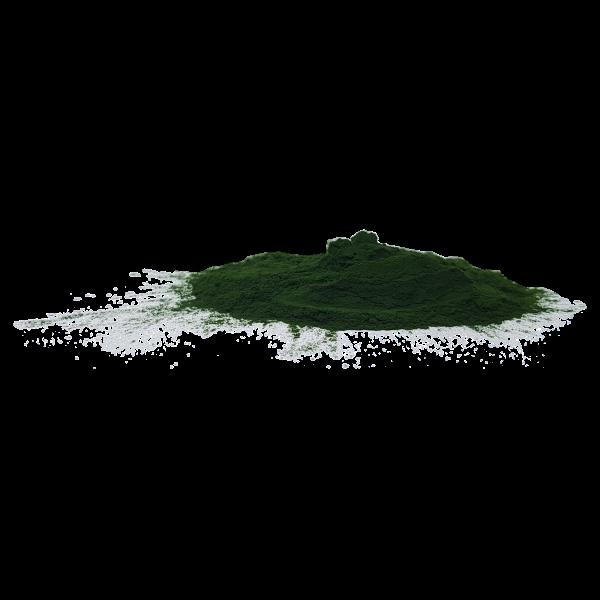 Algomed Chlorella Algenpulver